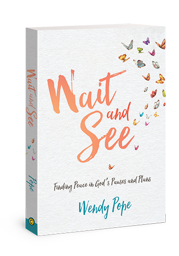 Wait_and_See_cover