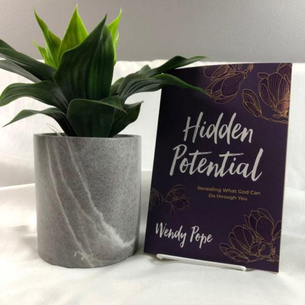 Wendy Pope: Hidden Potential Book